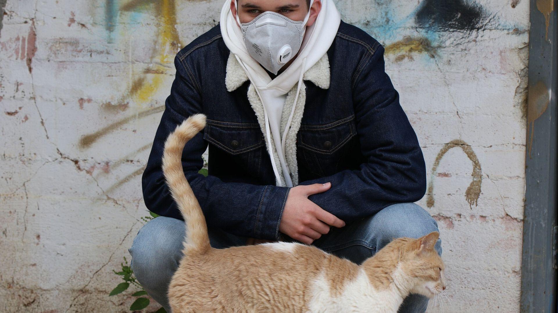 Кошка и человек в маске